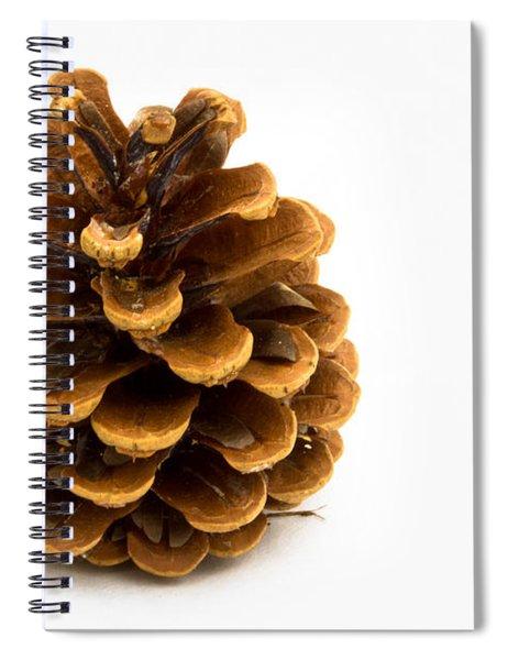 Pine Cone Spiral Notebook