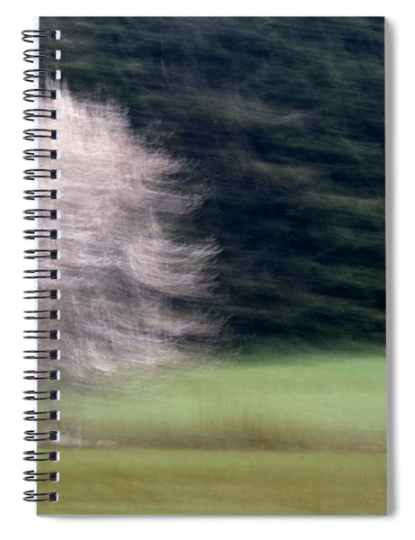 Pink Flowering Tree In Spring Spiral Notebook