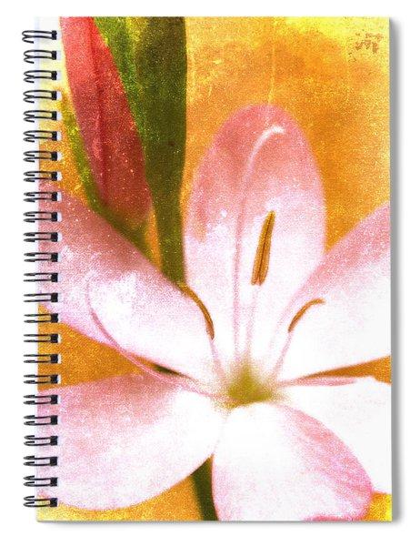 Pink Gladiolus On Orange Spiral Notebook