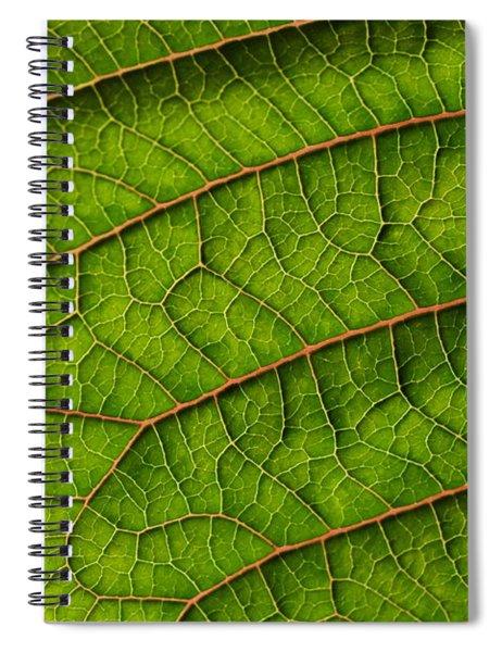 Poinsettia Leaf I Spiral Notebook