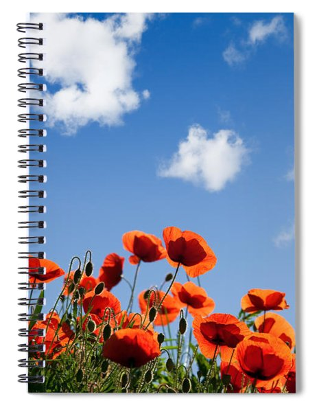 Poppy Flowers 05 Spiral Notebook