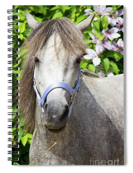 Portrait Of Lulu Spiral Notebook