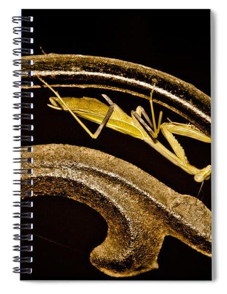 Albuquerque, New Mexico - Prayer Scroll Spiral Notebook