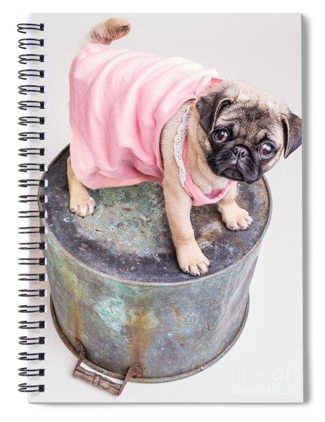 Pug Puppy Pink Sun Dress Spiral Notebook