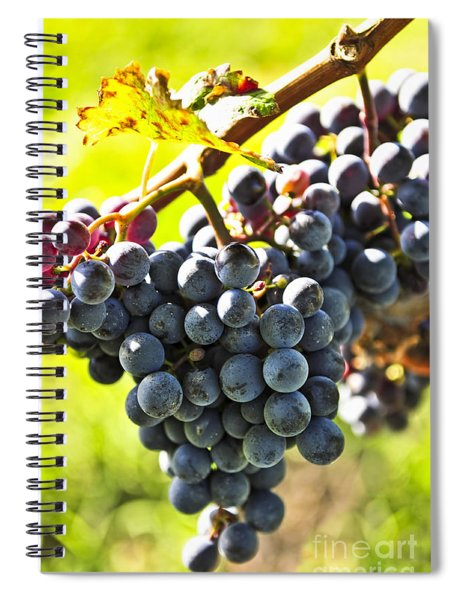Purple Grapes Spiral Notebook