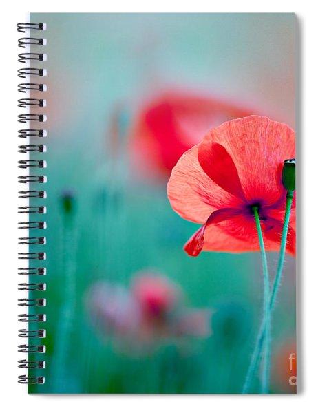 Red Corn Poppy Flowers 04 Spiral Notebook