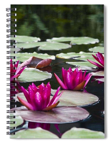 Red Water Lillies Spiral Notebook