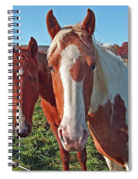 Ruff 'n Reddy Spiral Notebook