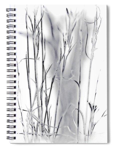 Sentinel Shadow Spiral Notebook