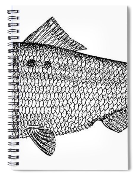 Shad Spiral Notebook
