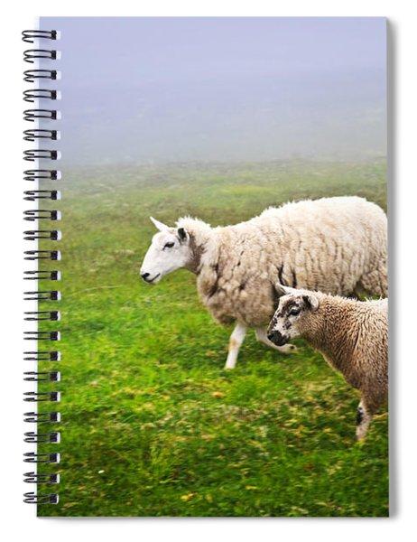 Sheep In Misty Meadow Spiral Notebook