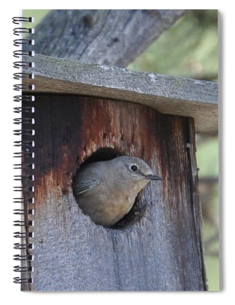 She's Home Spiral Notebook