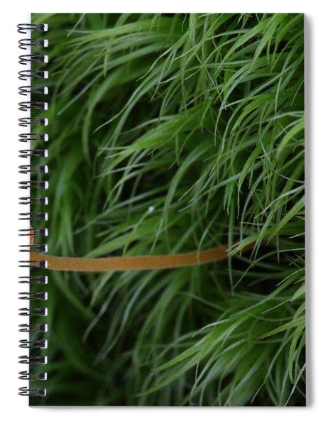 Small Orange Mushroom In Moss Spiral Notebook