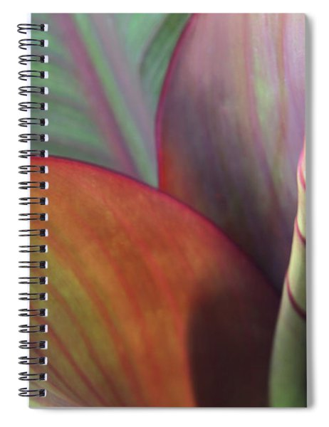 Spiral Notebook featuring the photograph Soft Focus Petal by Lorraine Devon Wilke