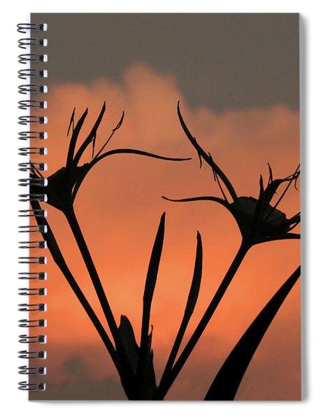 Spider Lilies At Sunset Spiral Notebook
