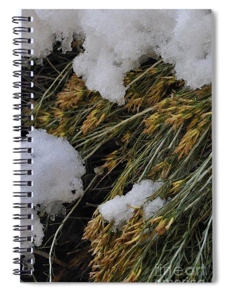 Spring Arrives Spiral Notebook
