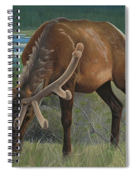 Spring Gazing Spiral Notebook