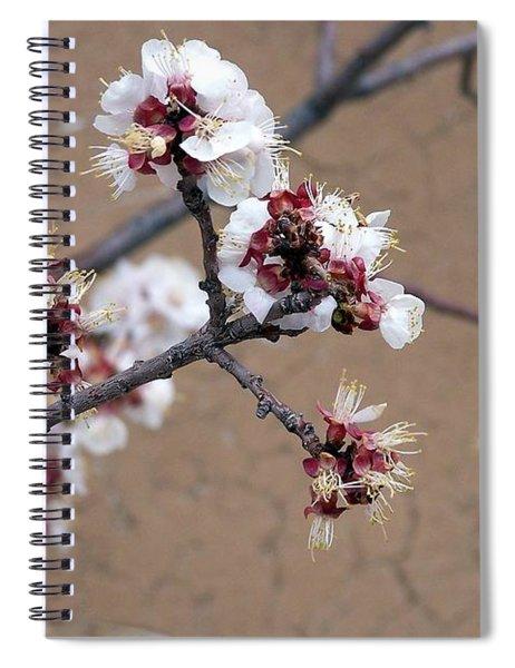 Spring Promises Spiral Notebook