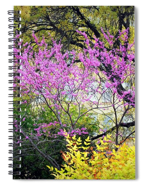 Spring Trees In San Antonio Spiral Notebook