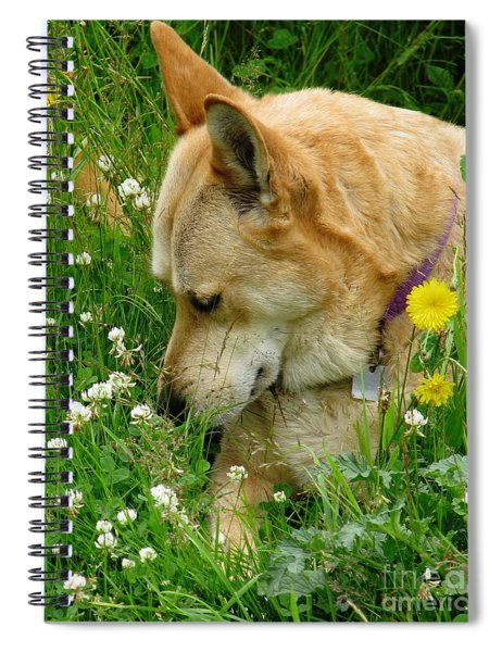 Stop And Smell The Clover Spiral Notebook
