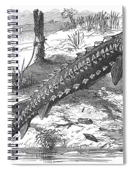 Sturgeon Spiral Notebook