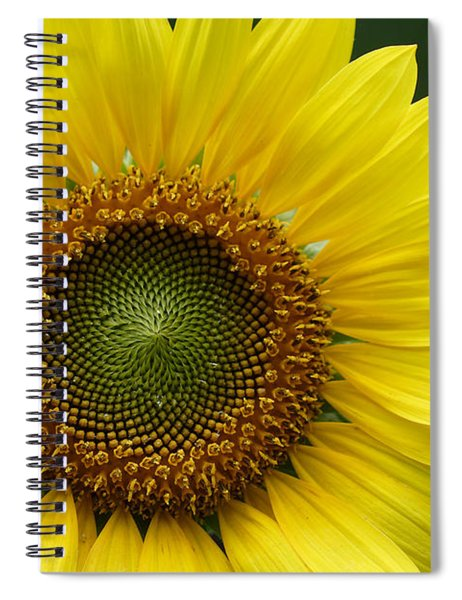 Sunflower With Insect Spiral Notebook