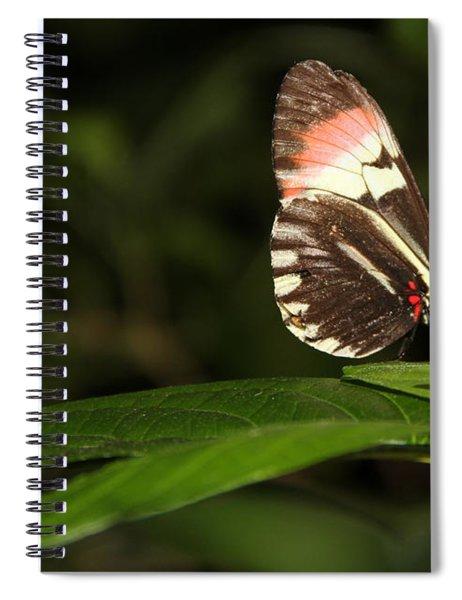 Take A Pose Spiral Notebook