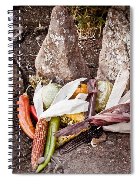 Albuquerque, New Mexico - Thanksgiving Spiral Notebook