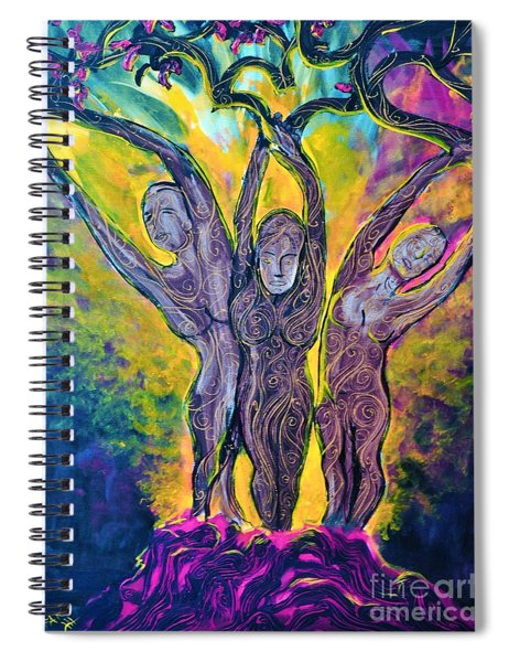 The Ascent Spiral Notebook