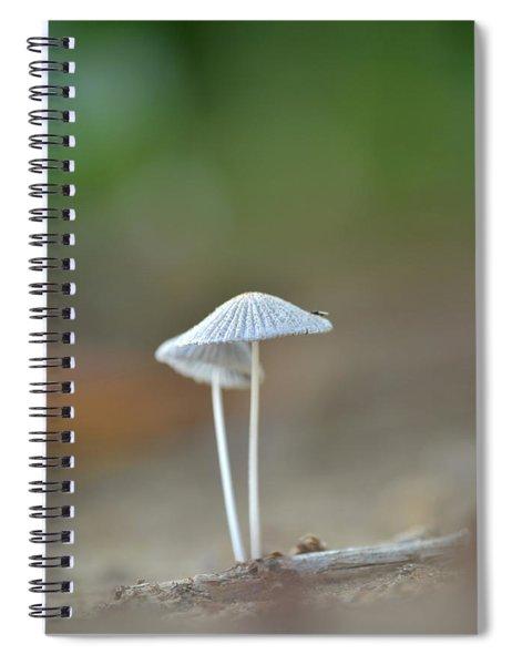 The Mushrooms Spiral Notebook