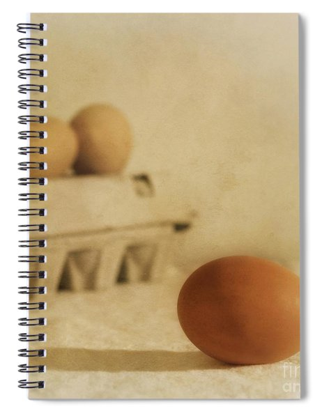 Three Eggs And A Egg Box Spiral Notebook
