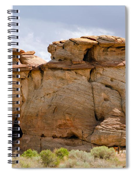 Three Fat Ladies Spiral Notebook