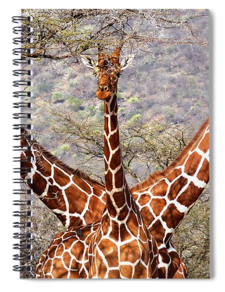 Three Headed Giraffe Spiral Notebook