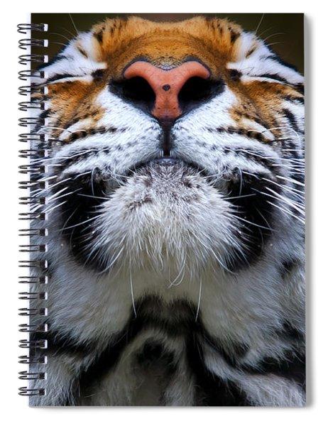 Tiger 1  Spiral Notebook