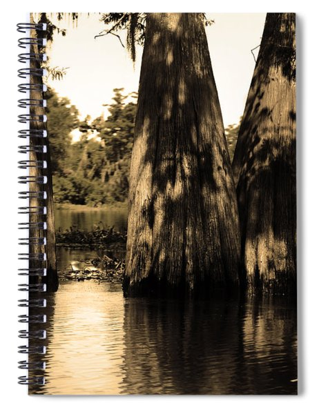Trees In The Basin Spiral Notebook