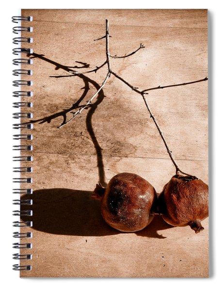 Albuquerque, New Mexico - Twin Pomegranates Spiral Notebook