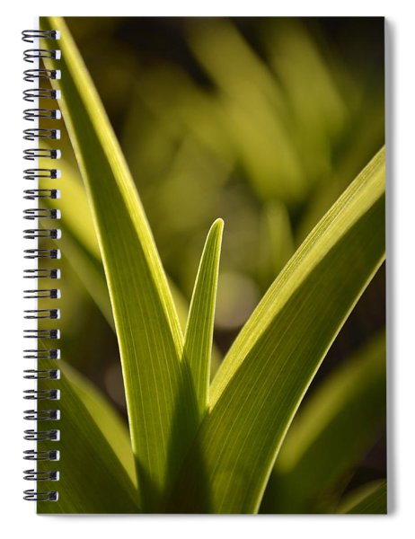Variegated Light 1 Spiral Notebook