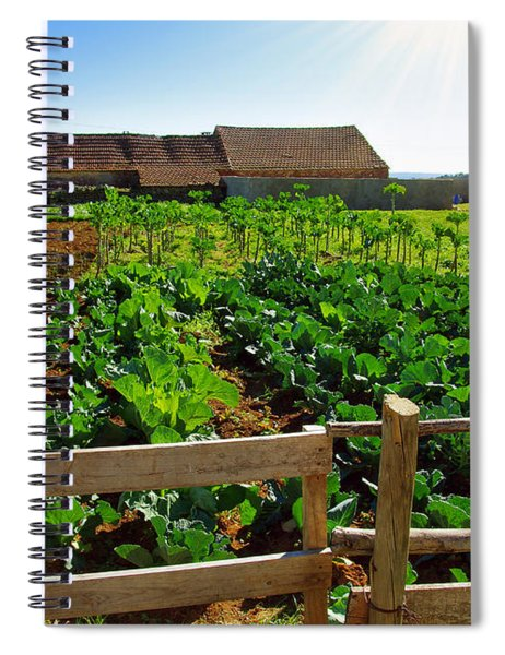 Vegetable Farm Spiral Notebook