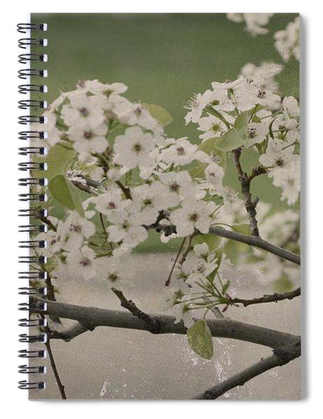 Vintage Spring Spiral Notebook