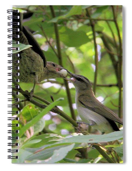 Vireo And Cowbird Spiral Notebook