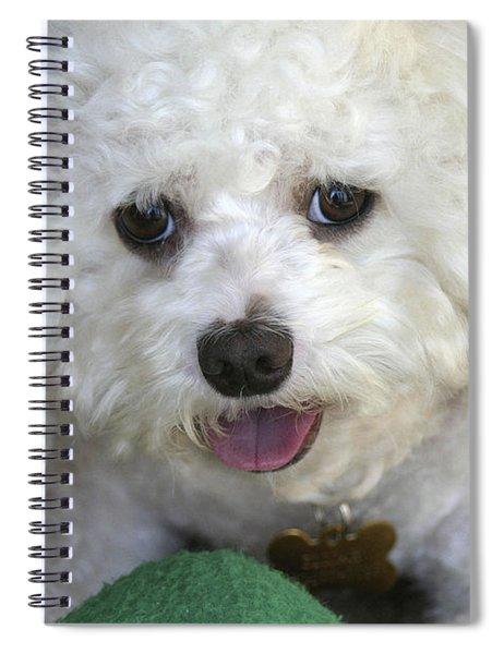 Wanna Play Ball? Spiral Notebook