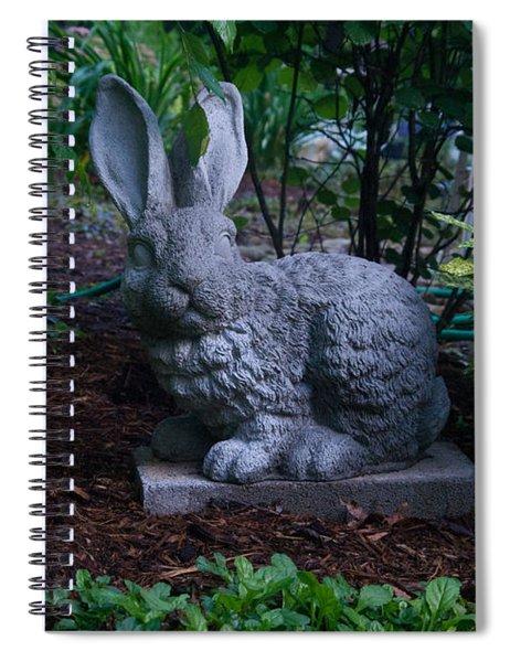 Watchful Rabbit Spiral Notebook