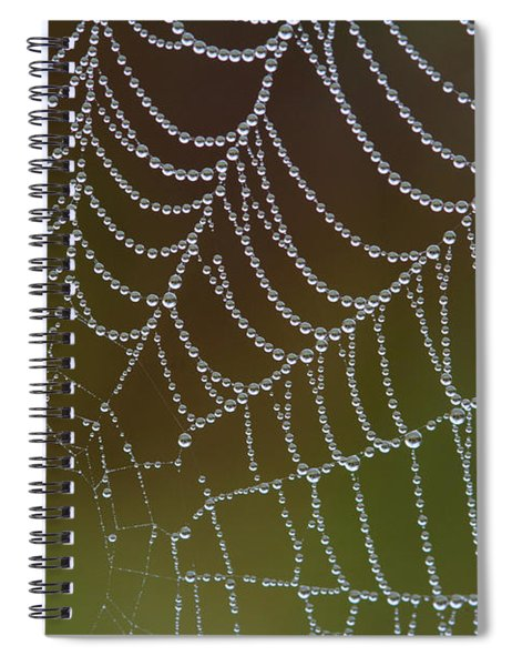 Web With Dew Spiral Notebook