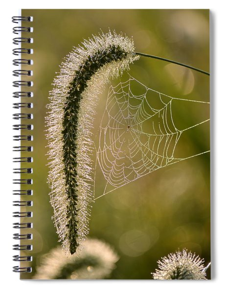 Webbed Tail Spiral Notebook