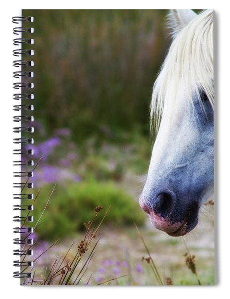 White Horse Spiral Notebook