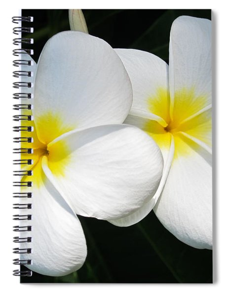 White Plumerias Spiral Notebook
