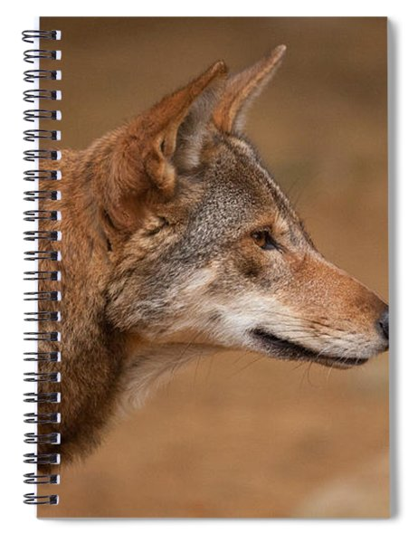 Wile E Coyote Spiral Notebook