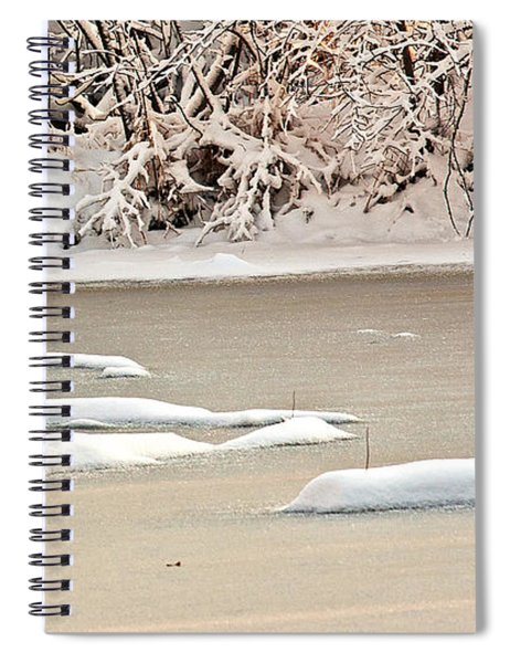 Spiral Notebook featuring the photograph Winter Fox by Edward Peterson