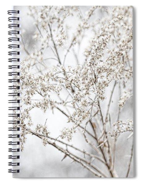 Winter Sight Spiral Notebook