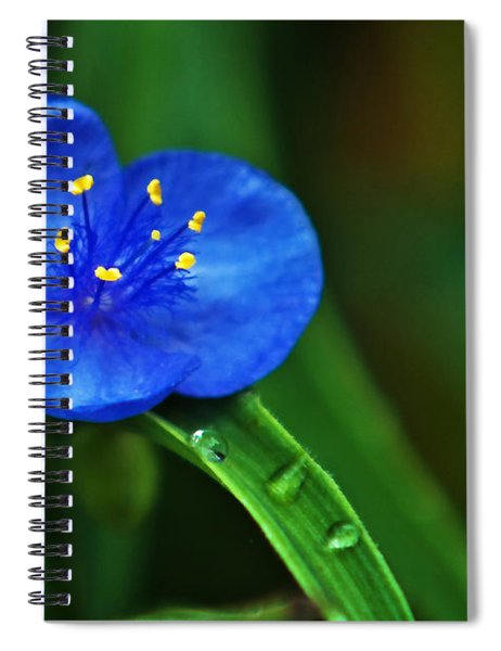 Yellow Blue And Raindrops Spiral Notebook
